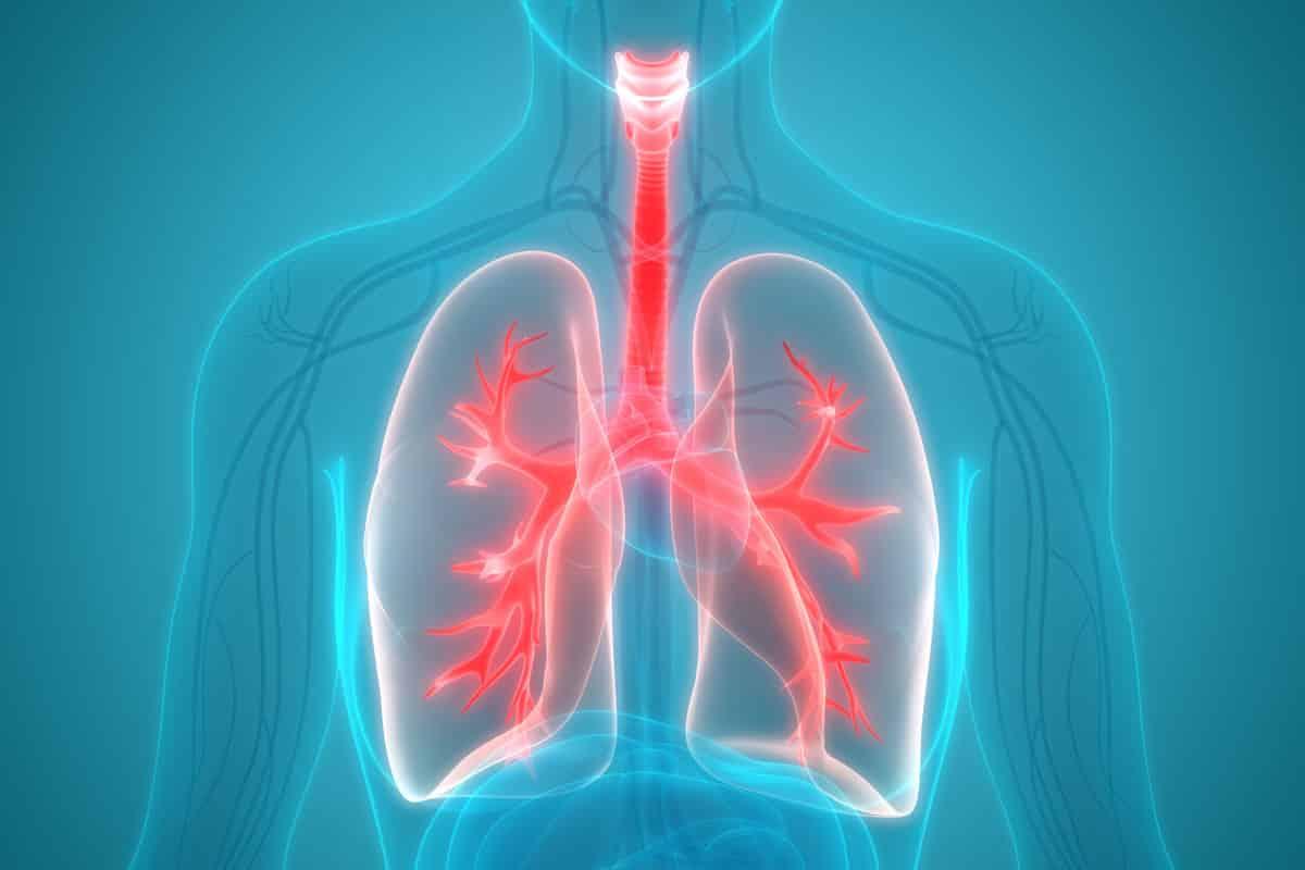 corona lungs